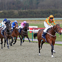 Lingfield 28th February