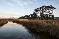 Rondevlei freshwater lake system, Garden Route National Park, South Africa