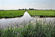 Nederland, Nieuwerkerk a/d Ijssel, 9-5-2011Landschap in het groene hart.Foto: Flip Franssen/Hollandse Hoogte