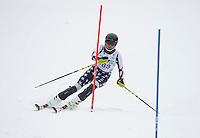 Tecnica Cup at Gunstock January 18, 2015.  ©2105 Karen Bobotas Photographer