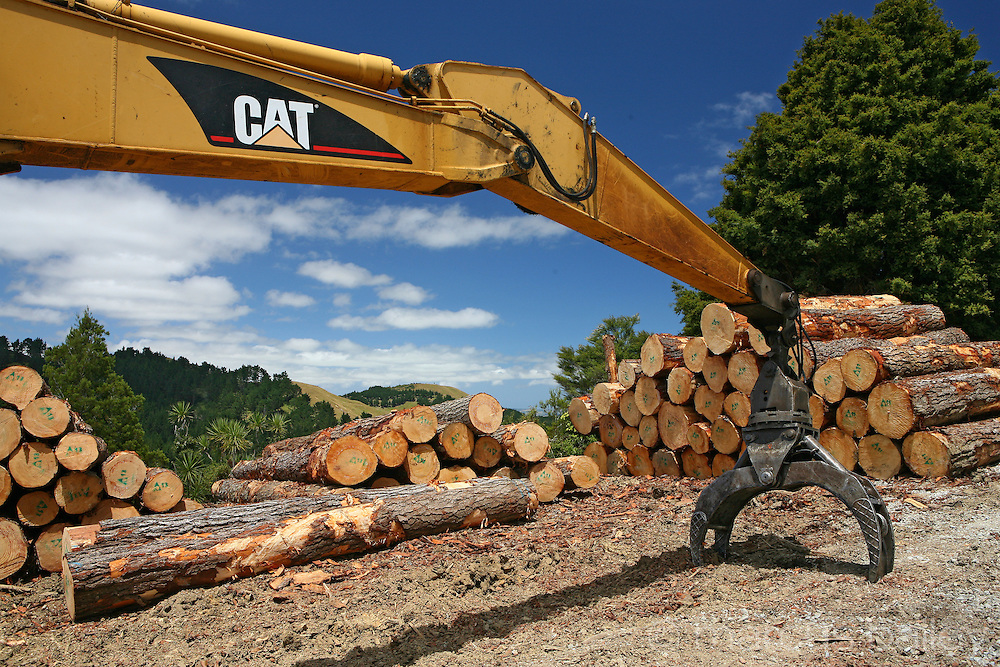 cat machinery used in new zealand forestry, lies dormant beside a pile of timber logs with rolling hills in the distance and a blue sky backdrop in the Rodney District, New Zealand