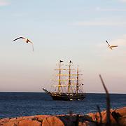 Tremastet sejlskib ligger ved anker ud for Allinge ved aftenstide.