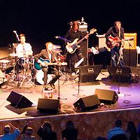Musicians / Concerts