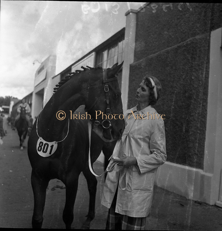 R.D.S. Horse Show, Tuesday, Northern Winner at the Dublin Horse Show. <br /> 08.08.1961