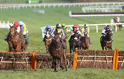 Melrose Boy and Kieron Edgar head away from the last flight before going on to win The Velcourt Conditional Jockeys' Handicap Hurdle Race run during day three of the November Meeting at Cheltenham Racecourse.
