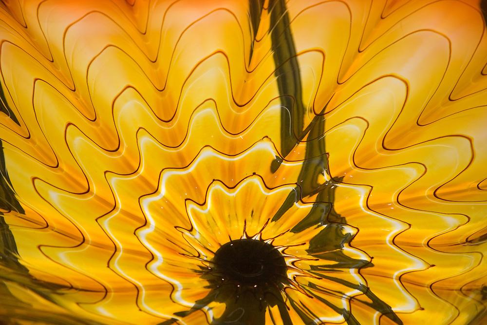 Detail of Monarch Window of glass art by Dale Chihuly, Union Station, Tacoma, Washington, USA