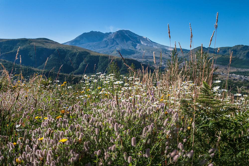 Mt St Helens, 2005,