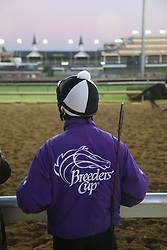 Morning workouts in preparation for Breeder's Cup 2011 at Churchill Downs in Louisville Wednesday, Nov. 02, 2011. Photo by Jonathan Palmer