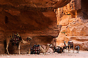The Nabatean tombs of Petra, Jordan, were taken over by the Romans as they lay on the old frankincense trade routes. Royal Tombs.