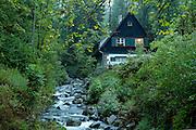 Naturpark Südschwarzwald ..Hinterzarten, Ravennaschlucht, Forsthaus am Bach im Wald bei Dämmerung