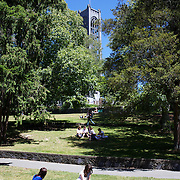 People enjoy lunch in the grounds of Christ Church Cathedral, the Anglican cathedral in Nelson. The cathedral is located at upper Trafalgar Street. Nelson,  New Zealand,1st February 2011. Photo Tim Clayton