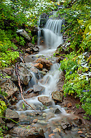 A small stream accented with autumn snow on the eastern side of Mount Rainier.