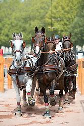 Jozsef Dobrovitz Jr, (HUN), Alandro, Bandidos, Conversano, Vivaldo, Wijsneus - Driving Marathon - Alltech FEI World Equestrian Games™ 2014 - Normandy, France.<br /> © Hippo Foto Team - Becky Stroud<br /> 06/09/2014