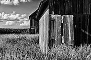 A barn in Peoria County, Illinois. ©David Zalaznik