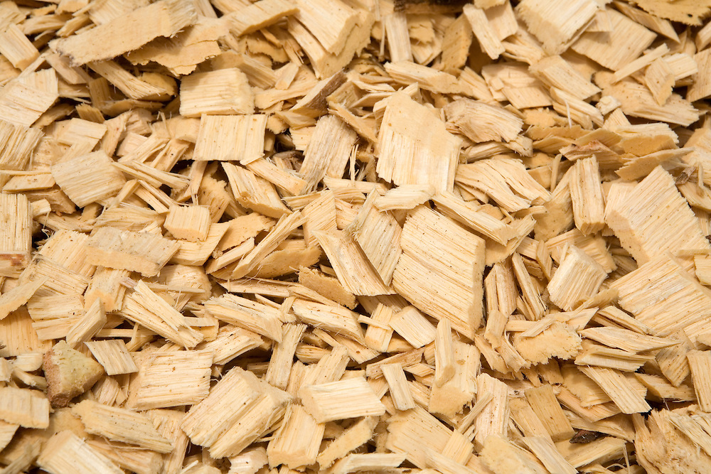 rubber tree wood chips. Buchanan, Liberia.