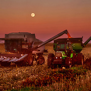 A golden harvest moon rises over a corn field being harvested near Ames, Iowa, in October of 2007.  An abundant corn crop buoyed the Iowa farm economy  as commodity prices have been boosted by the demand for corn for ethanol plants - which produce an alternative fuel supply.
