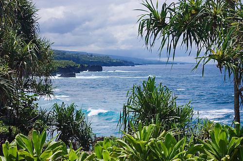 Hana Coast View, Framed By Lauhala Trees And Ti Plants At Kahanu Garden;  National.