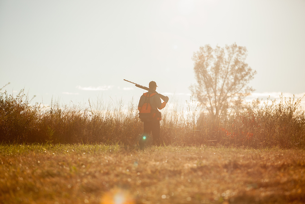 Upland hunter walking through the field during the sunrise.