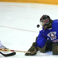 20080509: Ice Hockey - IIHF World Championship, Slovenia vs Slovakia, Halifax, Canada