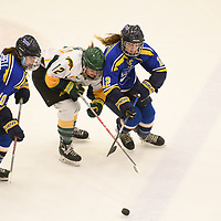 2nd year forward Chelsea Hallson (12) of the Regina Cougars in action during the Women's Hockey home game on February 9 at Co-operators arena. Credit: Arthur Ward/Arthur Images