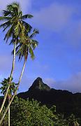 Mt. Te Rua Manga, Avarua Town, Rarotonga, Cook Islands<br />