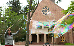 Playing with big bubbles as an end of the year stress reliever at PLU on Saturday, May 16, 2015. (Photo: Lace Smith/PLU)