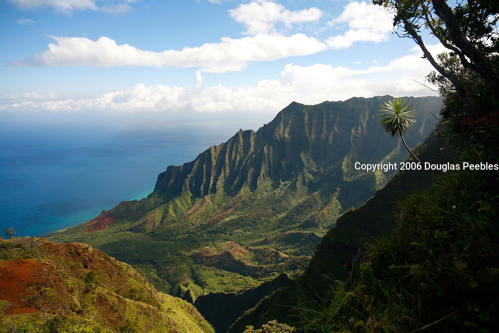 Kalalau Valley from Kokee, Kauai, Hawaii
