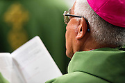 Vatican City oct 4th 2015, opening mass in St Peter's Basilica for  the bishops synod on family. In the picture a bishop