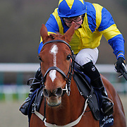 King's Request and Liam Jones winning the 4.30 race