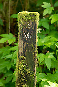 Mile marker along the Redwood Creek Trail in Redwood National Park, California.