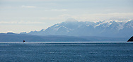 The Cordillera Real as seen from Lake Titicaca at 12,500' above sea level near the Island of the Moon in Bolivia.