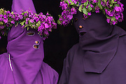 'Cucurucho' during Good Friday celebrations commemorating the Passion and Death of Jesus Christ. <br /> Photographed in the town of Tingo where these 'Cucuruchos' use bouganvillia to decorate their outfits. This is a Catholic tradition.<br /> Tingo, Pichincha Province. Andes<br /> ECUADOR, South America