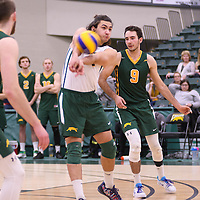1st year libero Dryden Wall (18) of the Regina Cougars in action during Men's Volleyball home game on November 18 at Centre for Kinesiology, Health and Sport. Credit: /Arthur Images