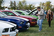 Visitors check out a variety of Ford Mustangs at the Hilton Apple Fest Auto Show on Saturday, October 4, 2014.