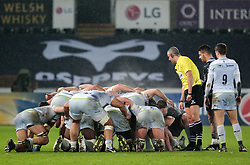 Referee John Lacey checks the scrum<br /> <br /> Photographer Simon King/Replay Images<br /> <br /> European Rugby Champions Cup Round 5 - Ospreys v Saracens - Saturday 13th January 2018 - Liberty Stadium - Swansea<br /> <br /> World Copyright © Replay Images . All rights reserved. info@replayimages.co.uk - http://replayimages.co.uk