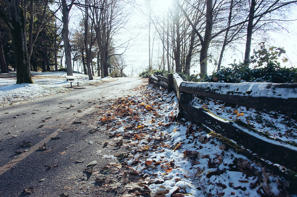 A light covering of snow on fallen autumn leaves and along a fence and path.
