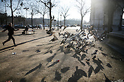 Tuesday February 12th 2008..Paris, France..Place Charles de Gaulle (Etoile) - 17th Arrondissement