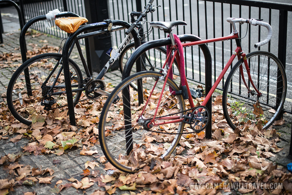 Bicycles chained to a bike rack stand in a thick layer of autumn leaves in central London.