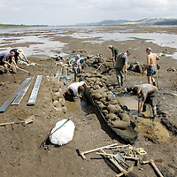 Bronze Age Log Boat in River Tay, Perthshire...28.07.06<br />