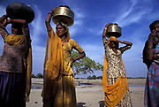INDIA: Rajasthan.Tribal women collect water in brass jars from the Oasis of Lourdhia, near Jodhpur