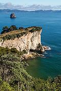 Turquoise coastline Sting Ray Bay, Cathedral Cove, Coromandel Peninsula