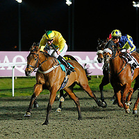 Midnight Sequel and Martin Lane winning the 8.20 race