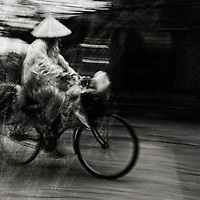 Cyclist on the way home. Hoi An. Vietnam