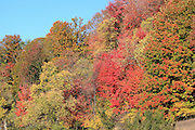 Glengary Hill, just north of Mesick, Michigan, was ablaze with color in October 2013.