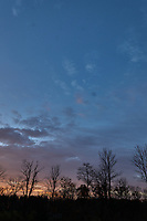 Autumn Sunrise Panorama. Seven of seven images taken with a Leica CL camera and 18 mm f/2.8 lens (ISO 200, 18 mm, f/11, 1/60 sec).