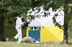 2019_07_08_Wembley_Murder_BC