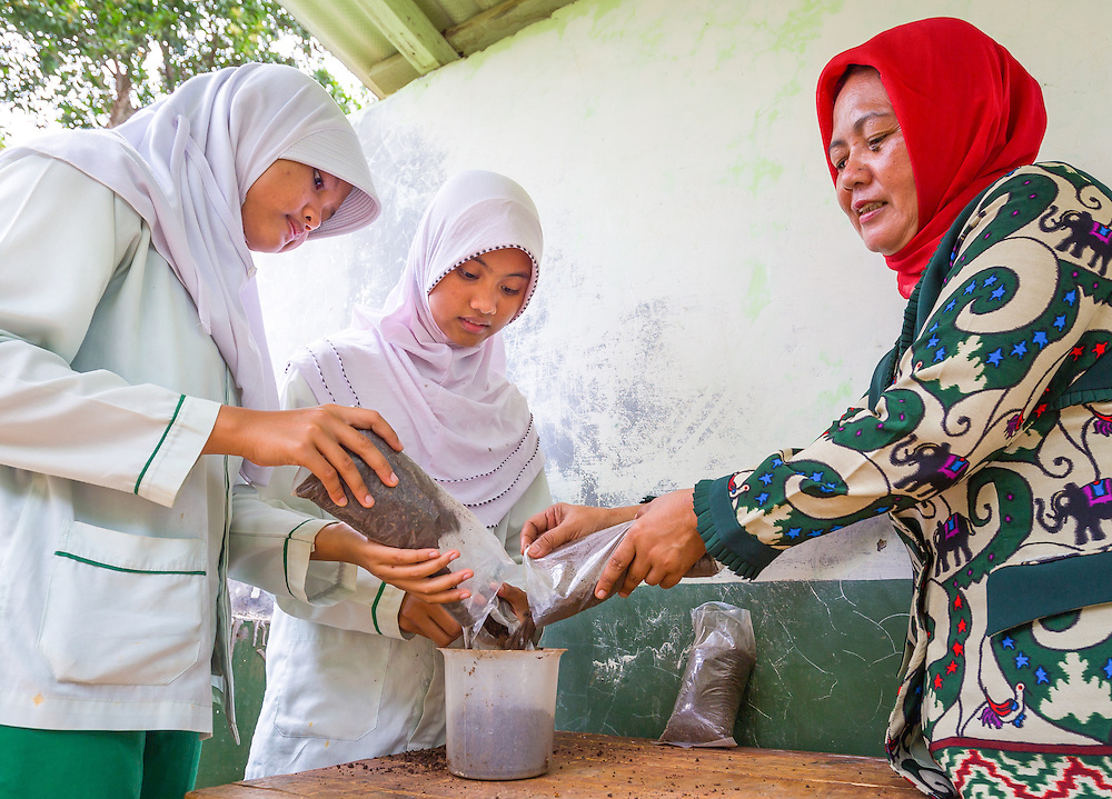 CAPTION: Students and teachers have been trained on how to use organic waste to make compost. Any excess is sold as fertiliser, and the profits generated go towards building a school garden. LOCATION: SMP N 7 School, Bandar Lampung, Indonesia. INDIVIDUAL(S) PHOTOGRAPHED: Dwi Wijayanti (left), Putri Aryanti Fadillah (centre) and Ms Sunarsih (right).
