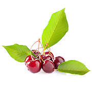 Ripe red cherries with green leaves isolated on white bacground.