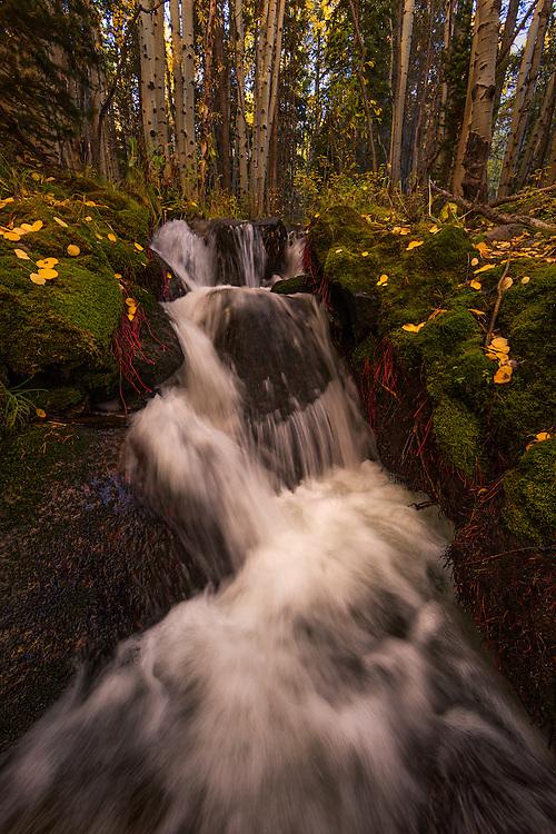 Boulder Brook, Rocky Mountain National Park, Colorado