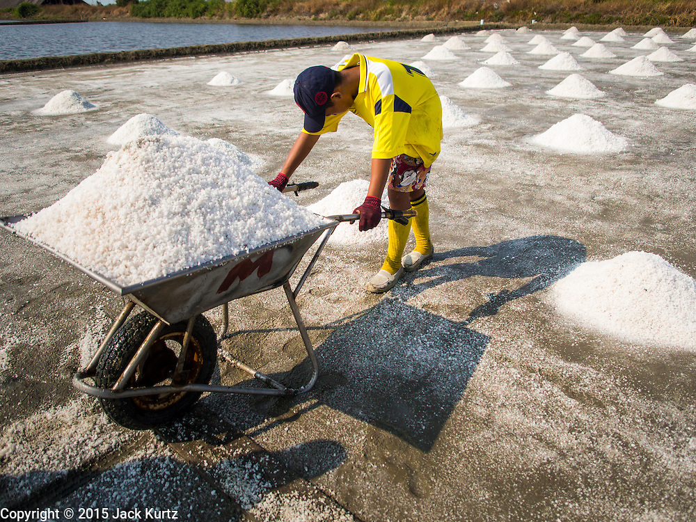 09 MARCH 2015 - NA KHOK, SAMUT SAKHON, THAILAND:  A worker gets ready to push a wheelbarrow full of salt to a storage area during the salt harvest in Samut Sakhon. The coastal provinces of Samut Sakhon and Samut Songkhram, about 60 miles from Bangkok, are the center of Thailand's sea salt industry. Salt farmers harvest salt from the waters of the Gulf of Siam by flooding fields and then letting them dry through evaporation, leaving a crust of salt behind. Salt is harvested through dry season, usually February to April. The 2014 salt harvest went well into May because the dry season lasted longer than normal. Last year's harvest resulted in a surplus of salt, driving prices down. Some warehouses are still storing salt from last year. It's been very dry so far this year and the 2015 harvest is running ahead of last year's bumper crop. One salt farmer said prices are down about 15 percent from last year.   PHOTO BY JACK KURTZ